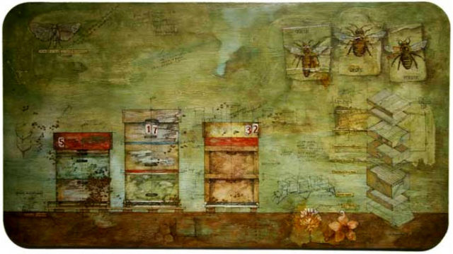 Beehives 5, 17 and 32