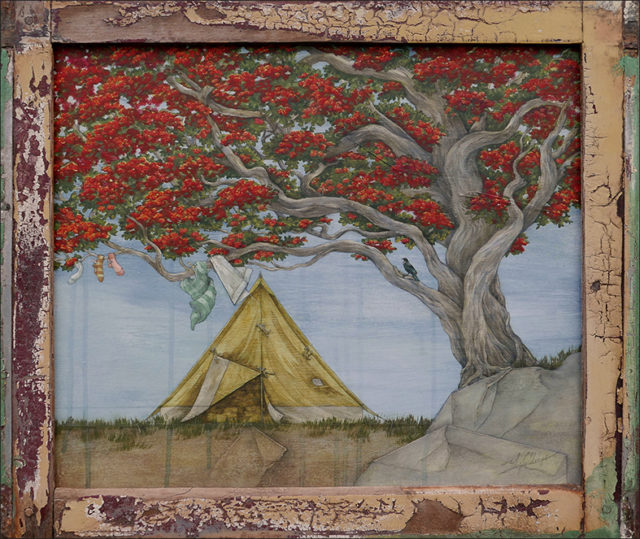 Camping  beneath the Pohutukawa Tree